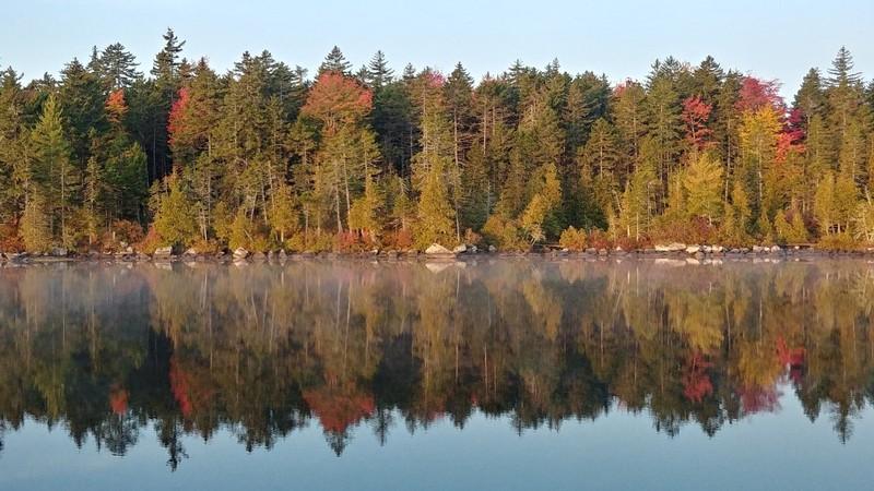 Purposes 2020 Appalachian Trail Journal : Reroute Ahead